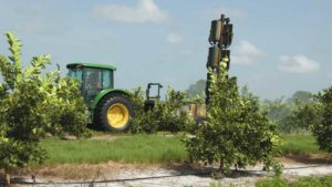 New Product Called on to Defend Citrus From Scourge