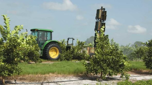 sprayer applying bactericides to citrus trees