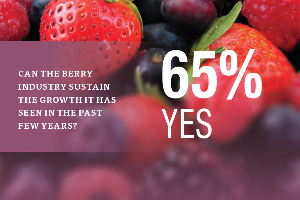 berry-industry-sustain-growth-2017-state-of-the-industry2