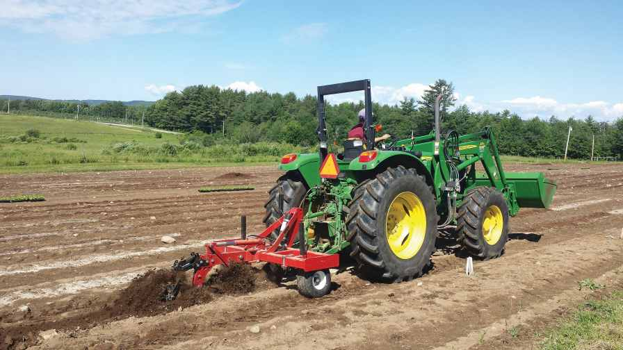 Permanent beds are being used by many small- to mid-size mixed vegetable growers to improve soil quality. In these systems, the types and level of tillage intensity varies greatly. Photo credit: Mark Hutton