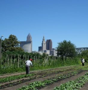 urban-farm-visits-2012-labor