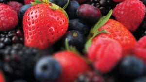 Promising Future for the Berry Industry