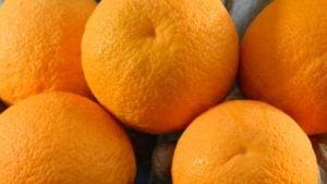 'Gold nugget' seedless tangerine