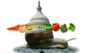 Food Safety Modernization Act moving at snail's pace