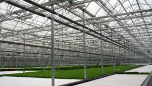 Iran Is Moving All Vegetable Growing Into Greenhouses