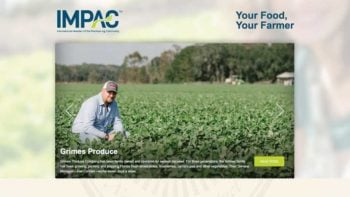 IMPAC.org screenshot