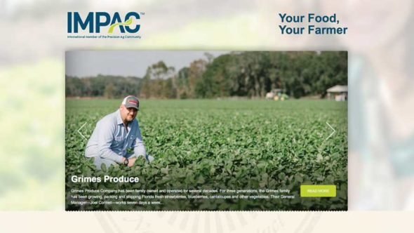 IMPAC.org screenshot