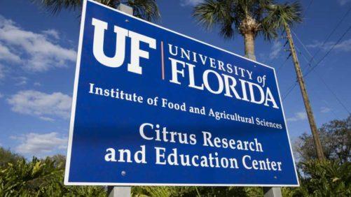 University of Florida Celebrating a Century of Citrus Research