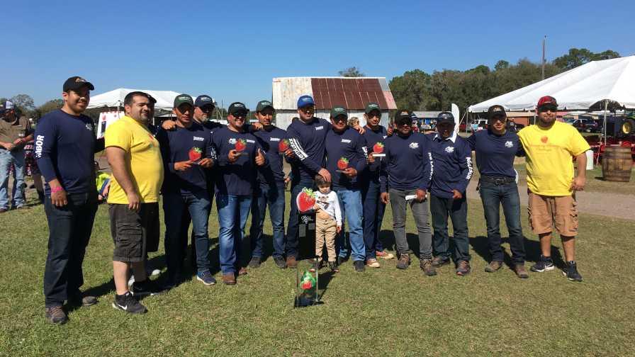 2017 Florida Strawberry Picking Challenge winners