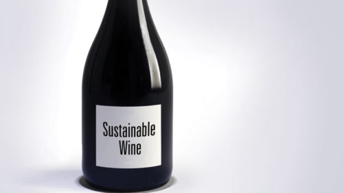 Winegrowers See Total Sustainability in Their Sights