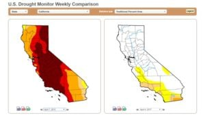 How California's No-Drought Status Affects Growers