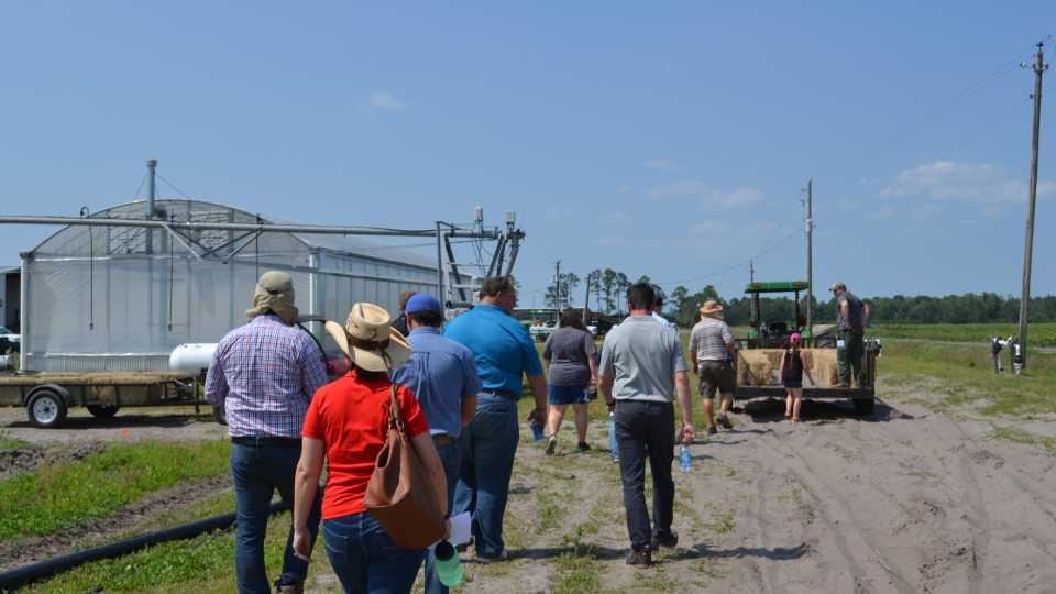 Florida potato field day tourgoers