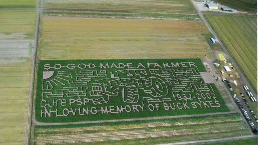 Sykes and Cooper Farms 2016 Corn Maze in Elkton, FL