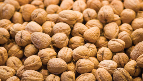 PRESERVE WALNUT QUALITY WITH EARLY CODLING MOTH CONTROL
