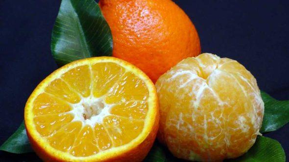 Sugar Belle oranges
