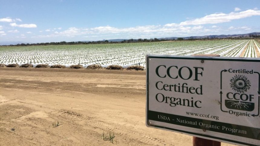 100-Plus California Organic Producers Call for Support in Farm Bill