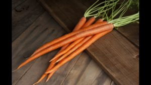 8 Carrot Varieties You Should Know About