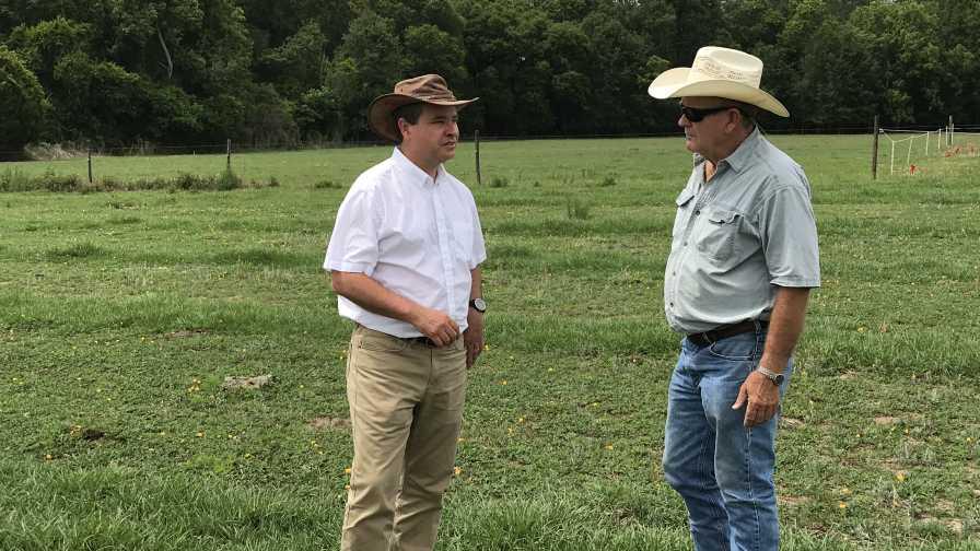 Jose Dubeux and Mack Glass talk farming in a Florida forage field
