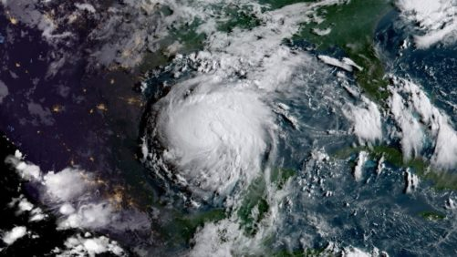 How Harvey May Impact Specialty Crop Growers