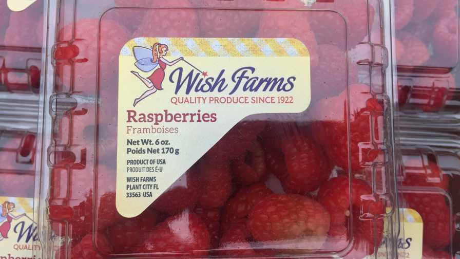 clamshell of Wish Farms raspberries