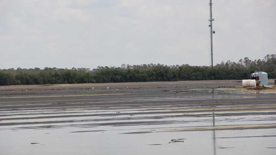 Flooded veggie field in SW Florida following Irma