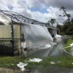 Greenhouse structure damage at SWFREC in Immokalee