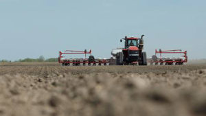 Key Considerations for Potato Farmers: The Importance of Crop Rotation