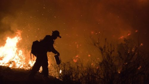 USDA to Help California Farmers Affected by Wildfires