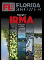 Florida Grower magazine November 2017 cover
