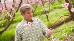 Stone Fruit Producer Named Organic Grower of the Year