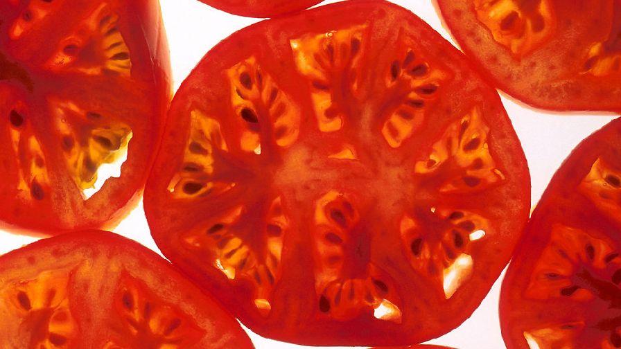 Back-lit-tomato-slice
