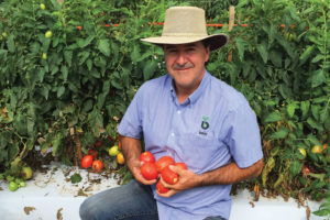 Bejo Seeds' Senior Tomato Breeder Doug Heath