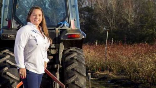 Sustainable Practices Make Perfect for Florida Farmers