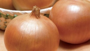 10 Onions You Should Know About