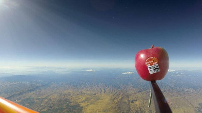 'Autumn Glory' Apple Soars into Space