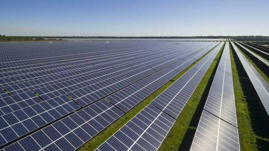 Are There Bright Futures in Solar Farming?