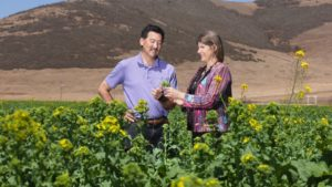 Steven-Koike-discusses-broccoli-with-a-USDA-plant-pathologist.-Photo-by-USDA