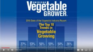 The Top Trends in Vegetable Growing