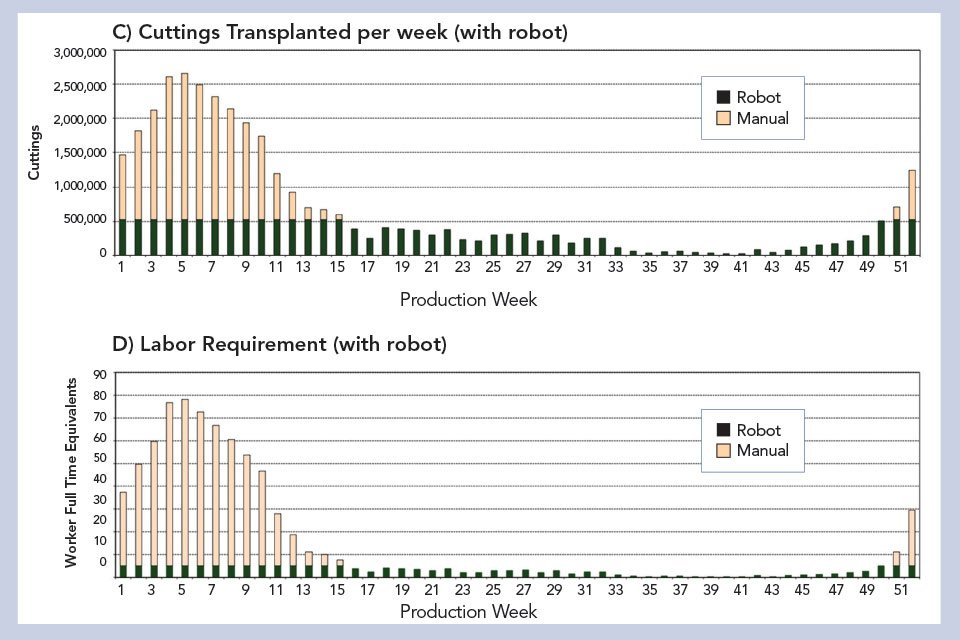 UF/IFAS transplanted cuttings study-Robot-Chart