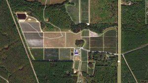 Google Earth shot of Florida Blue Farms