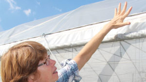 Berry Grower Says She's Beating Spotted Wing Drosophila With Netting