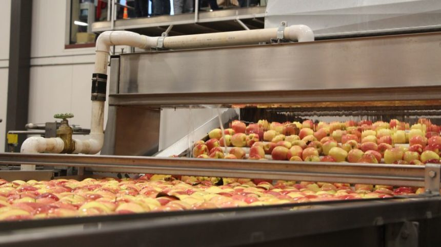 The Dawn of Food Safety is Upon Us [Opinion]