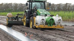 Tips for Sustainable Soil Disinfestation in Vegetables