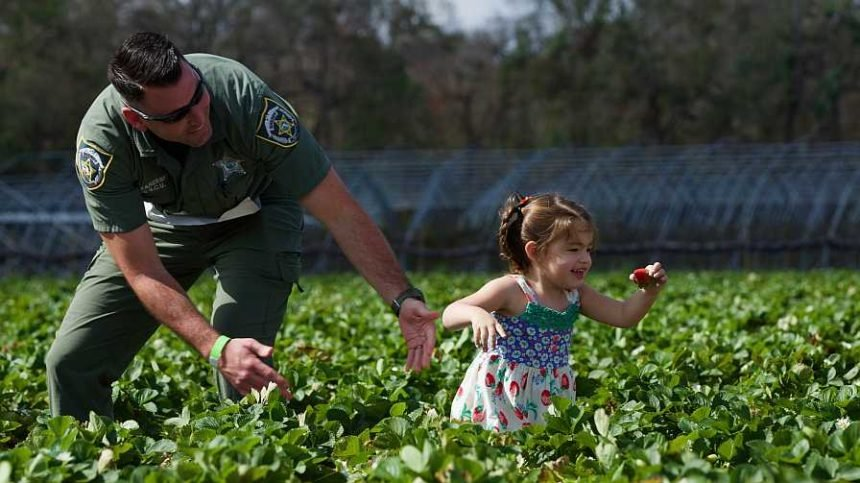 Florida Strawberry Pickers Rise to the Challenge for Charity
