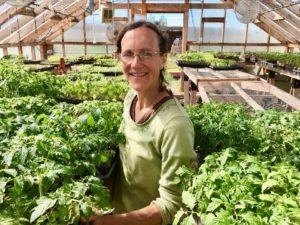Rachael-Hicks-tomato-starts-Three-Hearts-Farm