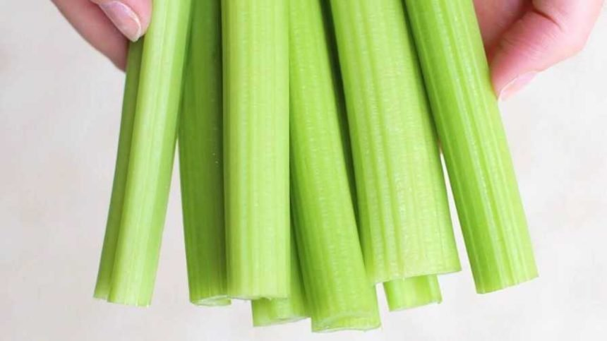 Duda Seeking to Put More Crunch in its Celery Supply
