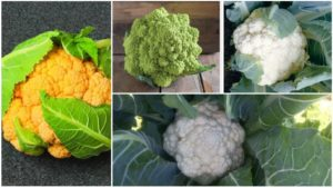 11 Cauliflower Varieties You'll Want to Grow
