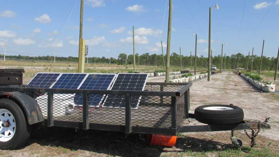 Solar system powering USDA Florida hops trial