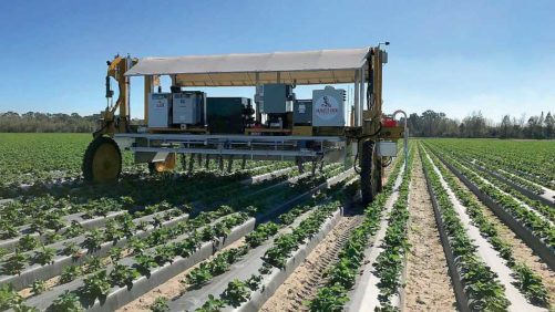 Get in Gear Now for Agriculture's Robotic Revolution