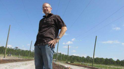 USDA Reaches Milestone in Florida Hops Research